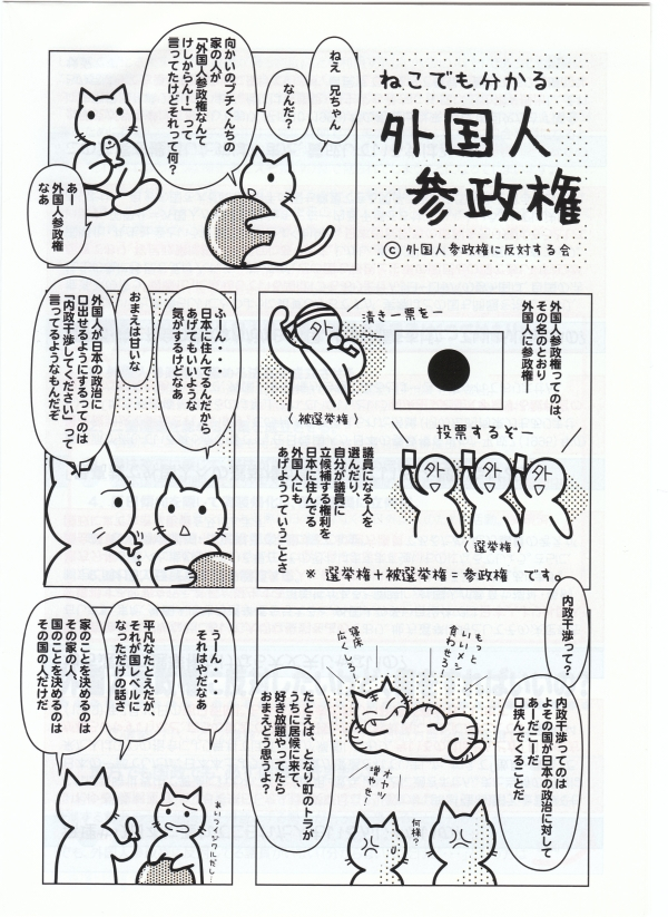 20090719_外国人参政権2.jpg