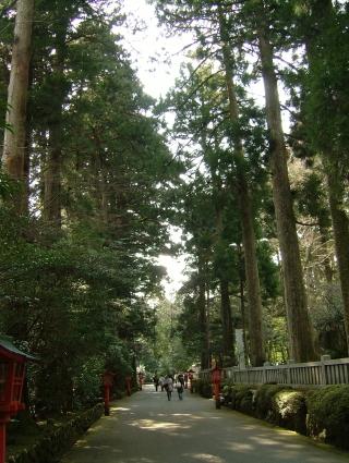 20100322_02箱根神社.jpg