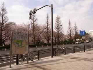 20110410_01靖国神社.jpg