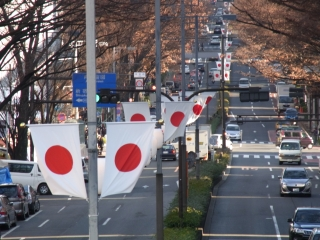 20111231_01明治神宮.jpg