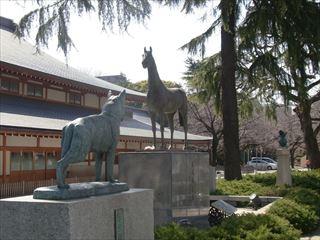 20140308_靖国神社03_320.JPG