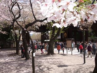 20140405_靖国神社と桜03_320.JPG