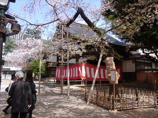 20140405_靖国神社と桜07_320.JPG