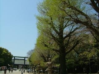 20090411_靖国神社01.jpg